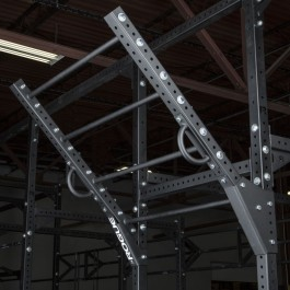 Rogue Monster Lite Flying Pull-up Bar