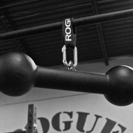 Dog Bone Pull-up Bar